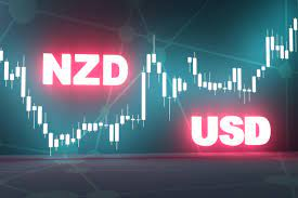 النيوزلندي يفقد العزم