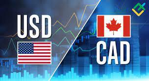 الدولار الكندي يرتفع بهدوء