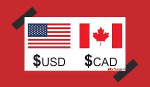 الدولار الكندي يستأنف الانخفاض